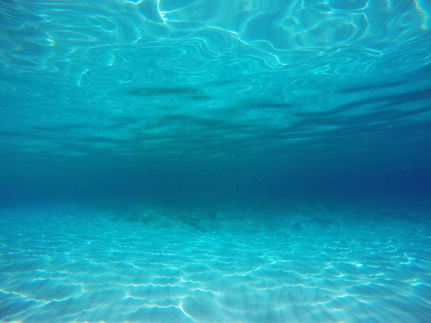 Tranquil underwater background